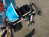 Nette Entwurfs-Baby-Spaziergänger Sr-BS03