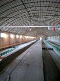 Galvanización caliente del uso de la granja avícola un tipo pequeña jaula del pollo del pollo
