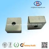 De Fabrikant van China van Magneet SmCo