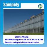 Fabrik-Preis-Glasgewächshaus für wachsende Gurke