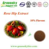 Форма порошка и выдержка вальмы Rose части плодоовощ