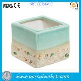 Supporto succulente di ceramica quadrato naturale del dell'impianto