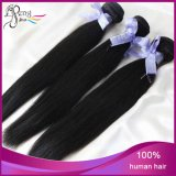 6A Unprocessed Malaysian Virgin Human Hair Stright Hair Extensions