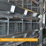 Cages automatiques en acier de poulet de couche du modèle Q235 galvanisées par bâti de H
