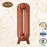Radiatore antico del ghisa per il riscaldamento domestico