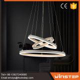 가정 장식적인 안내장 LED 펜던트 빛