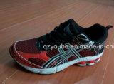 Chaussures de sport de Wome d'hommes de Confirmtable