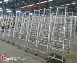 Foldable를 가진 높은 Quality Aluminum Ladder