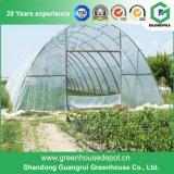 鉄骨フレームが付いている中国の農業の単一スパンのフィルムの温室