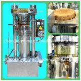 Aceituna hidráulica de Prefessional 120kg/H, máquina de la prensa del sésamo