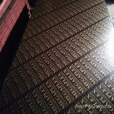 A película preta de Brown do núcleo do Poplar de China 18mm enfrentou a madeira compensada com logotipo do ouro
