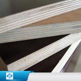 Revestido plástico de madeira personalizado de /PVC reúso/película enfrentou a madeira compensada