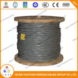 Aluminium de câble d'entrée de service de l'UL 854/type de cuivre expert en logiciel, type R/U Ser 6 6 6