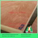 Contre-plaqué commercial/contre-plaqué de fantaisie pour la décoration ou les meubles