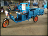Qualitäts-elektrisches Passagier-Dreirad/Rikscha