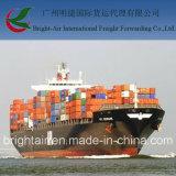 Товароотправитель перевозкы груза перевозки моря LCL FCL Морская Компания дешевый от Китая к всемирно