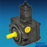 Pompa di olio idraulico variabile di Vp 20 della pompa a palette di spostamento
