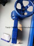 Válvula de borboleta de ferro / ferro dúctil tipo Lug com engrenagem de turbina