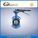 Guindineau industriel Valve&#160 de disque électrique malléable de fer ;