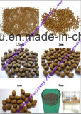 Wet Type Chine Machine à l'extrusion de pellets pour aliments pour animaux flottants en Chine