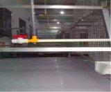 Cage de vente chaude de poulet d'éleveur avec le système automatique de matériel pour la ferme avicole (un type bâti)
