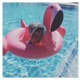 Flamingo-Form-aufblasbarer Baby-Kind-Gleitbetriebs-Sitzschwimmen-Boots-Ring