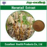 estratto dell'erba del Horsetail del silicone di 7% 12%