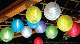 Lanterna solare della zucca per la decorazione Scsl-M21-Dl10L del giardino