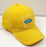 Il regalo la L maglia del ricordo di Promotiona di estate di Hotel&Resorts mette in mostra la protezione