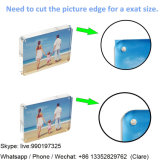 楕円形のアクリルの子供および子供の磁気写真フレーム