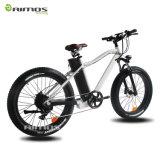bici eléctrica del ejercicio de la montaña de 48V 250W No-Plegable la bici eléctrica/Bycicle/Ebike de la playa gorda del neumático