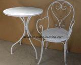 Напольные таблица и стул утюга мебели сада установили (LL-WST002)