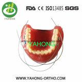 Collegare ortodontici di Niti degli accessori dentali