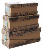 Fertigkeit-Papierbehälter mit Bogen für Förderung &Package