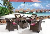 Openlucht /Rattan/de Reeks van de Lijst van Chair& van de Rotan van het Meubilair van de Tuin/van het Terras/van het Hotel (HS1629AC&HS7616DT)