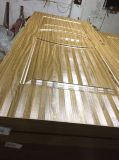Puerta plástica de madera del compuesto WPC