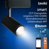 Spur-Licht 12W HF-2.4G drahtloses FernsteuerungsDimmable LED