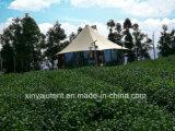 Роскошный большой шатер сафари для напольный располагаться лагерем