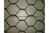 60X80mmの緑色PVC上塗を施してある六角形の金網の網