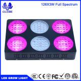 Veg/de Bloei die Volledig Spectrum 410nm kweken 730nm leiden kweekt Lichte MAÏSKOLF 1000W Gelijk aan 2000W HPS kweekt Lichten