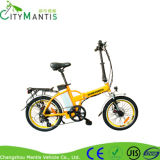 Bici eléctrica de la velocidad de Cms-TDM05z 6 con dos asientos