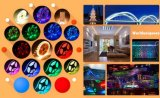 Flexibele LEIDENE van de Decoratie van Kerstmis Lichte IP65 SMD5630 60LEDs/M 5m 300LEDs 12V 24V R/G/B//W/Y/Cw/Ww LEIDENE van de Strook Waterdichte Stroken