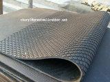 공장 직매 육각형 안정되어 있는 매트, 암소 축사 매트
