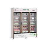 Refrigerador a favor do meio ambiente do armazenamento da medicina do termostato do computador do projeto