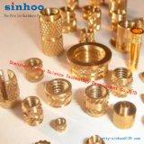 Noix en laiton de garniture intérieure d'amorçage de moletages pour thermoplastique