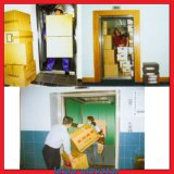 Levage de cargaison pour l'usine et la construction célèbre