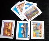 Cartes de jeu personnalisées de papier/cartes du tisonnier/Plastic/PVC/Tarot/Game