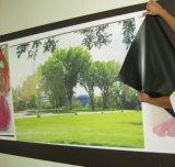 Изготовленный на заказ винил полного цвета железистый покрывая графическое печатание, печатание порошка утюга стальное бумажное