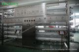 Système RO de traitement de l'eau de forage avec adoucisseur (1000L / H)
