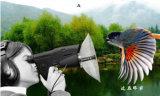 Monocular Teleskop für im Freien Tier-Vogel-Überwachenhörende Einheit